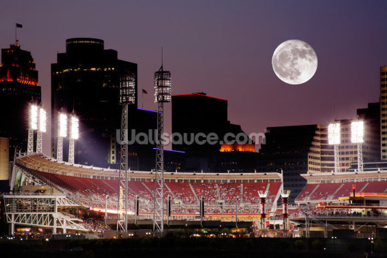 Baseball by Night Wallpaper Wall Murals