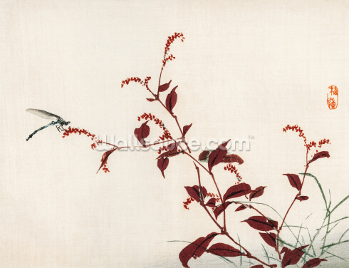 Dragonfly Wallpaper Wall Murals