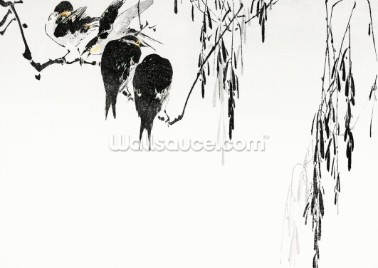 Perched Magpies Wallpaper Wall Murals
