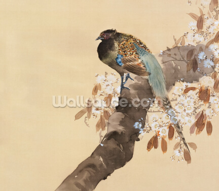 Pheasant on Cherry Blossom Branch Wallpaper Wall Murals