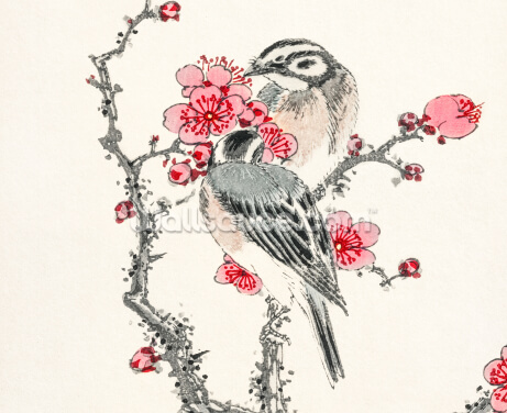 Pine Bunting and Plum Tree Wallpaper Wall Murals
