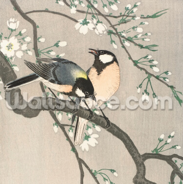 Tits on Cherry Branch Wallpaper Wall Murals