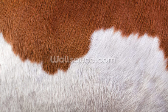 Brown and White Cowhide Wallpaper Wall Murals
