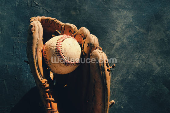 Ball and Mitt Wallpaper Wall Murals