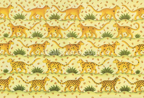 Leopard Spotted Wallpaper Wall Murals