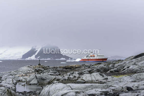 Boat in the Distance Antarctica Wallpaper Wall Murals