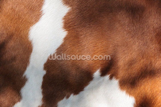 Brown and White Cow Print Wallpaper Wall Murals