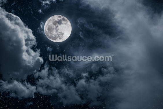 Mist at Night Wallpaper Wall Murals