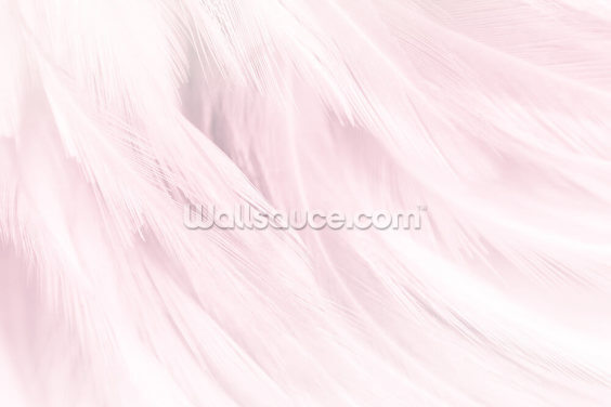 Light Pink Feather Print Wallpaper Wall Murals