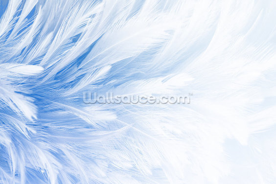 Light Blue Feather Print Wallpaper Wall Murals