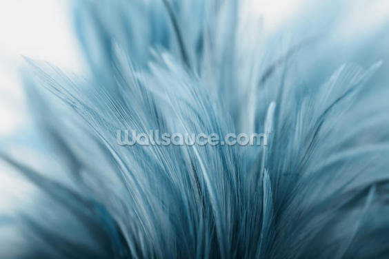 Ash Blue Feather Print Wallpaper Wall Murals
