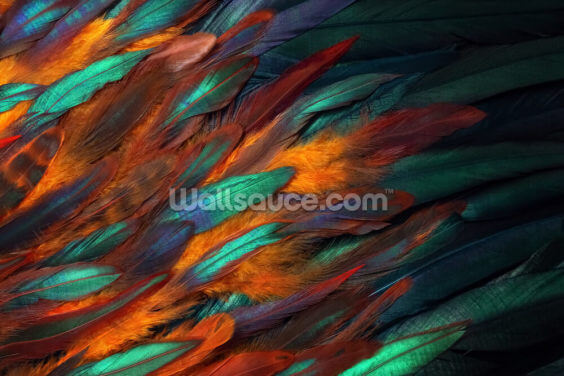 Decadent Feather Print Wallpaper Wall Murals