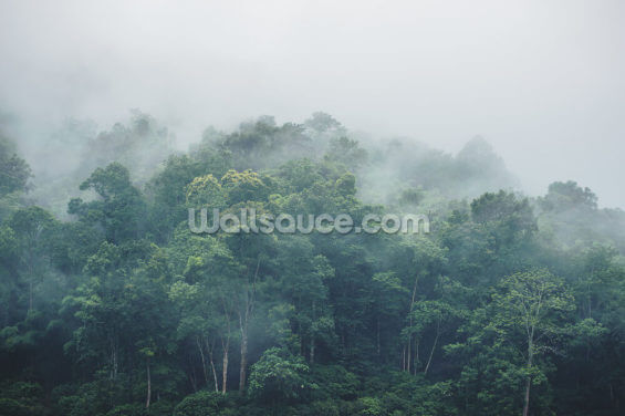 Misty Jungle Wallpaper Wall Murals