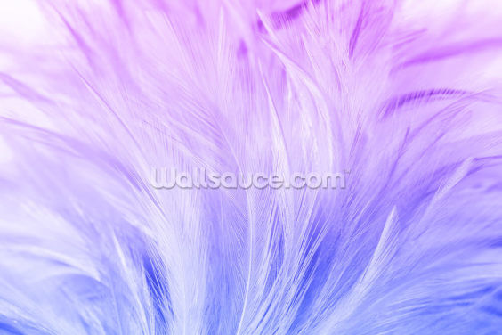 Lilac and Blue Feather Print Wallpaper Wall Murals