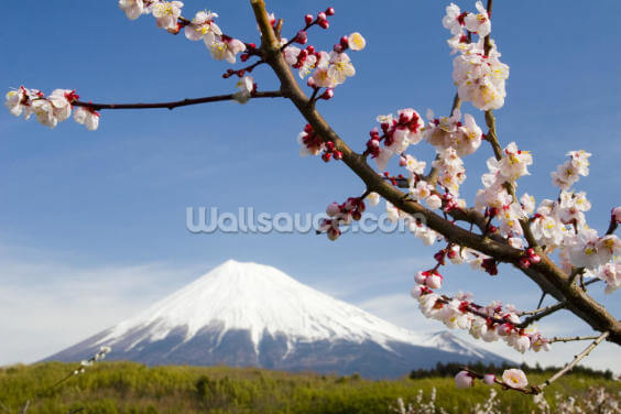 Mount Fuji Wallpaper Wall Murals