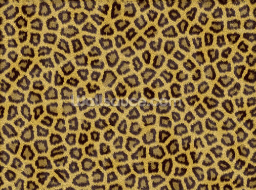 Leopard Skin Wallpaper Wall Murals