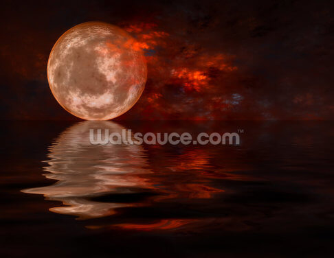 Autumn Moon Wallpaper Wall Murals