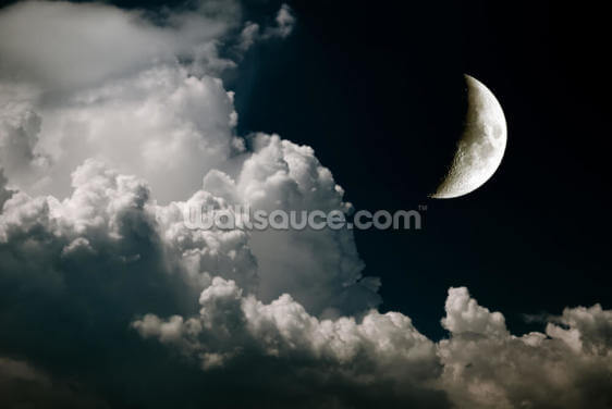 Crescent Moon Wallpaper Wall Murals