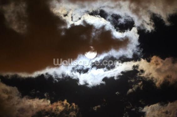 Mist over the Moon Wallpaper Wall Murals