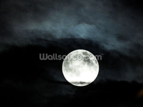 Black Sky Full Moon Wallpaper Wall Murals
