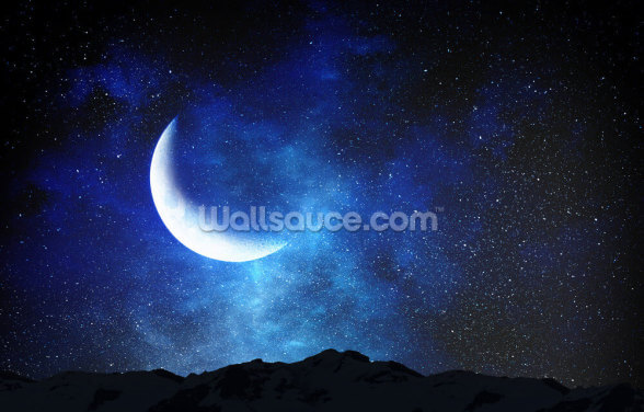 Star Studded Moon Galaxy Wallpaper Wall Murals