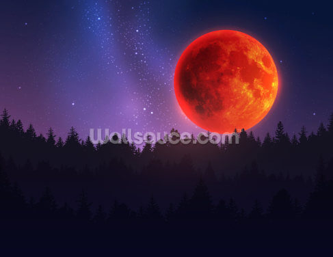 Red Forest Moon Wallpaper Wall Murals