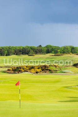 St Andrews Golf Course Wallpaper Wall Murals