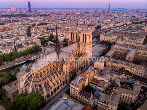 Notre Dame Aerial View Wallpaper Wall Murals