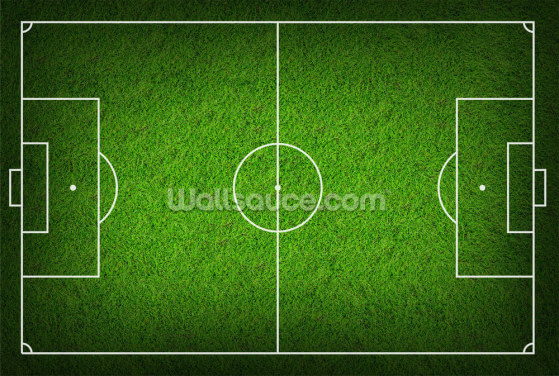 Soccer Pitch Wallpaper Wall Murals