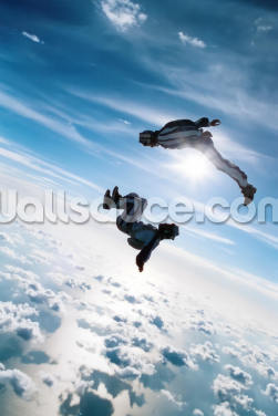 Freefall Skydiving Wallpaper Wall Murals