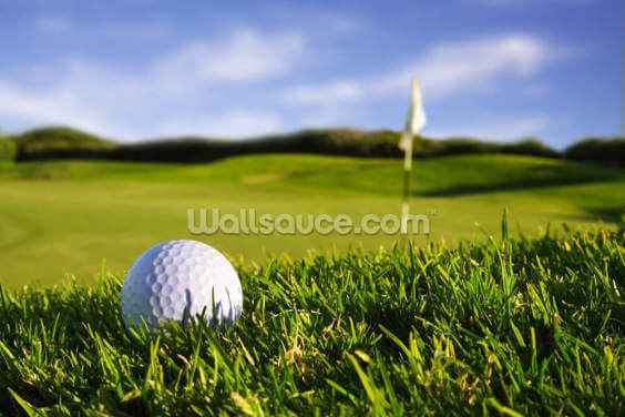 Golf Ball Wallpaper Wall Murals