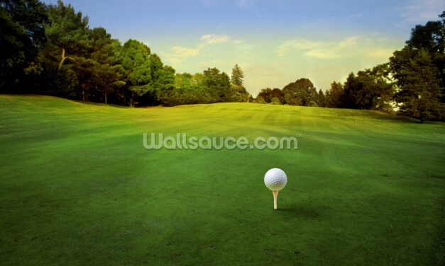 Tee Off Golf Wallpaper Wall Murals