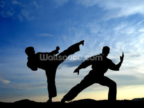 Karate Wallpaper Wall Murals