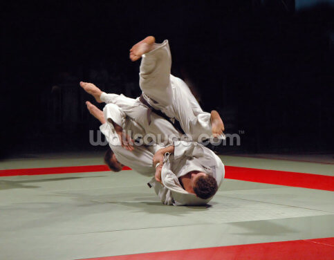 Judo Wallpaper Wall Murals
