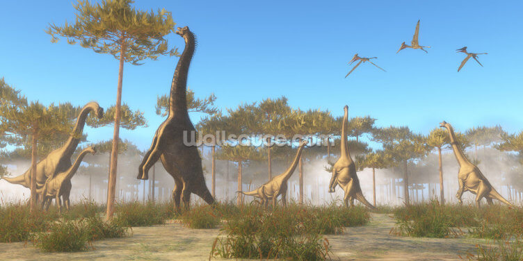Brachiosaurus Browsing Wallpaper Wall Murals