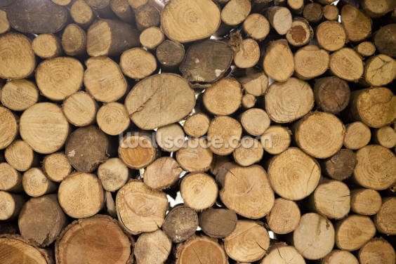 Stack of Logs Wallpaper Wall Murals
