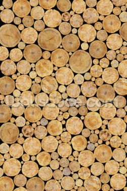 Stacked Logs Texture Wallpaper Wall Murals