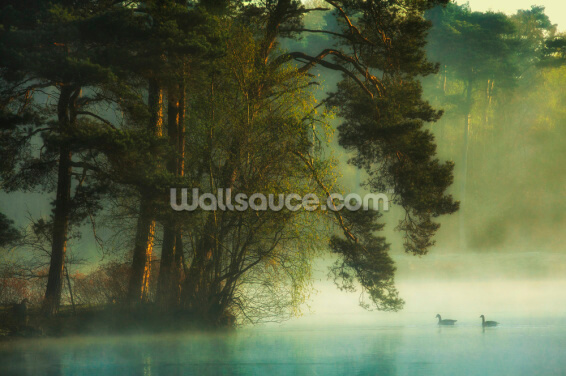 Calm Lake Wallpaper Wall Murals