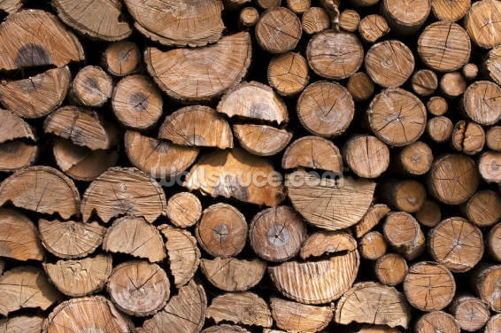 Log Pile Wall Wallpaper Wall Murals