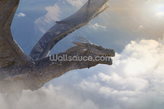 Fly with the Dragons Wallpaper Wall Murals