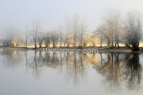 January Morning Wallpaper Wall Murals