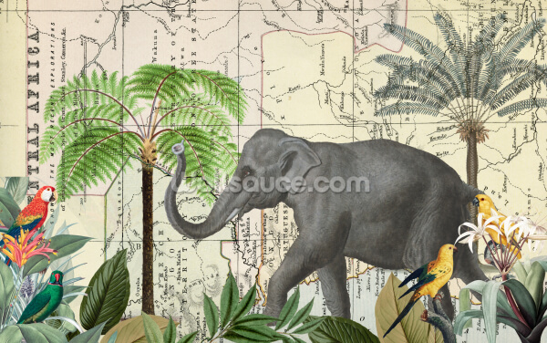 Africa Explore Quer Wallpaper Wall Murals