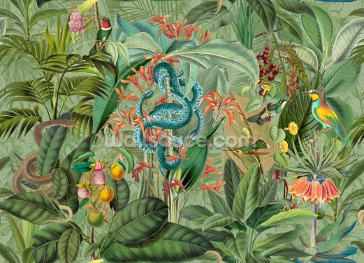 Paradise With Snakes Wallpaper Wall Murals