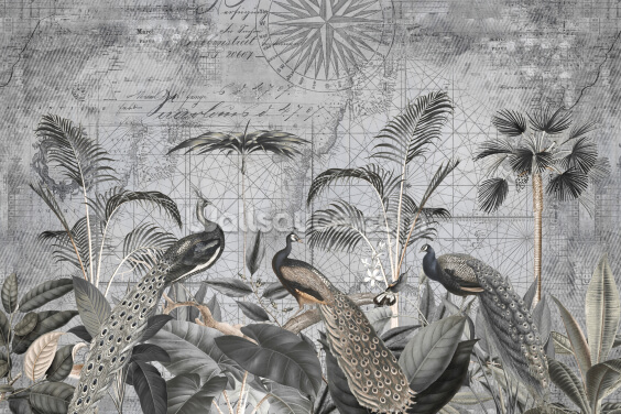 Peacocks Clan 4 Wallpaper Wall Murals