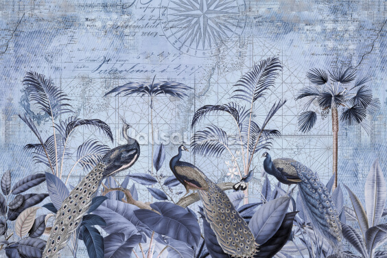 Peacocks Clan Wallpaper Wall Murals