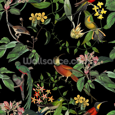 Tropical Hummingbirds Wallpaper Wall Murals