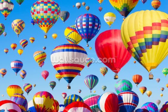 Hot Air Balloons Wallpaper Wall Murals