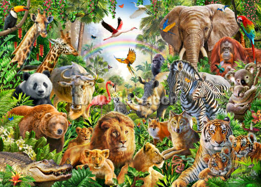 Global Animals Wallpaper Wall Murals