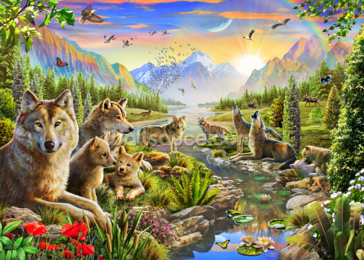 Summer Wolf Family Wallpaper Wall Murals