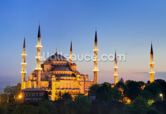 Blue Mosque Istanbul Wallpaper Wall Murals